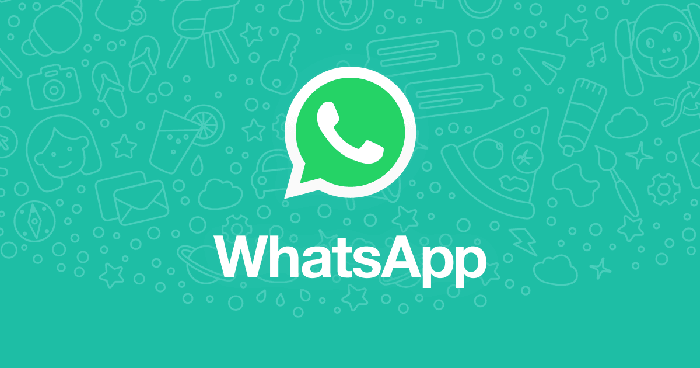 whatsapp,feature,video,calling,call,50people