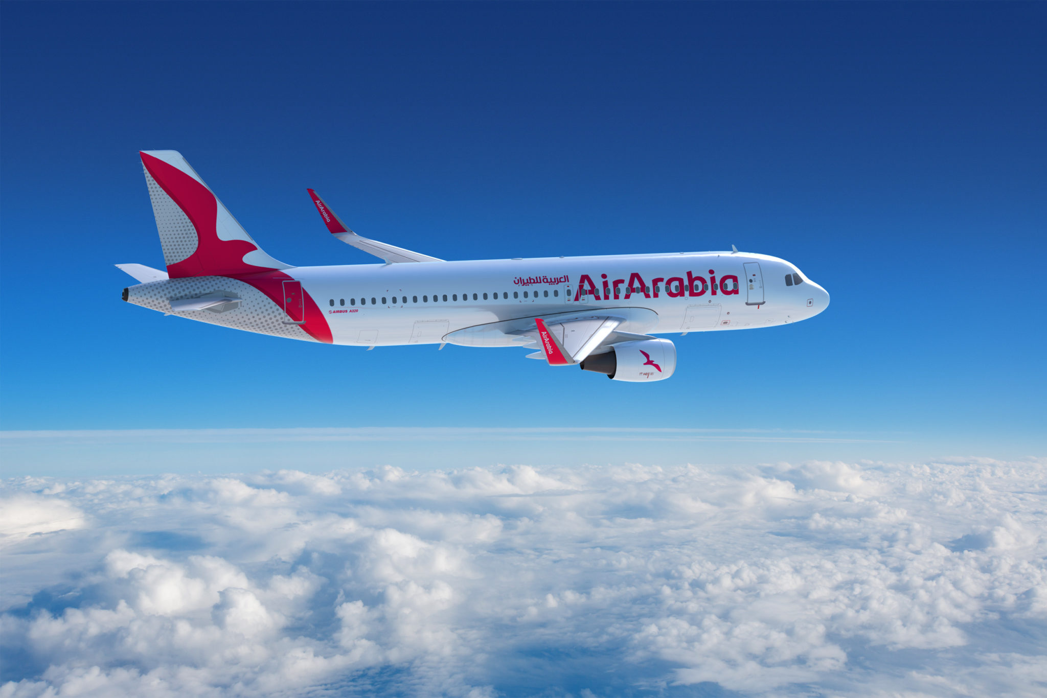 qatar,air,arabia,resume,daily,flights