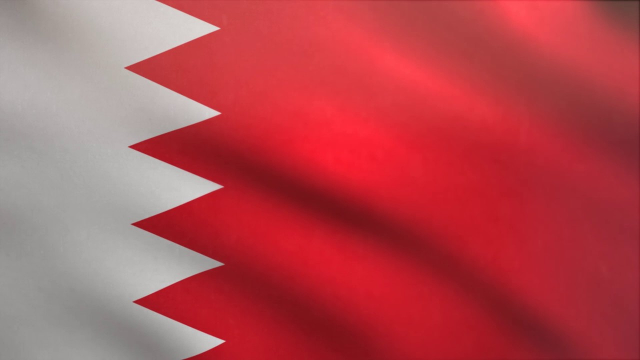 bahrain,human,rights,commission,criticized,qatar