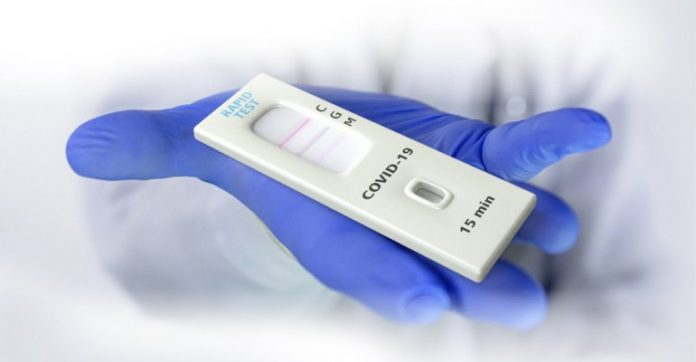new,coronavirus,cases,deaths,reported,qatar