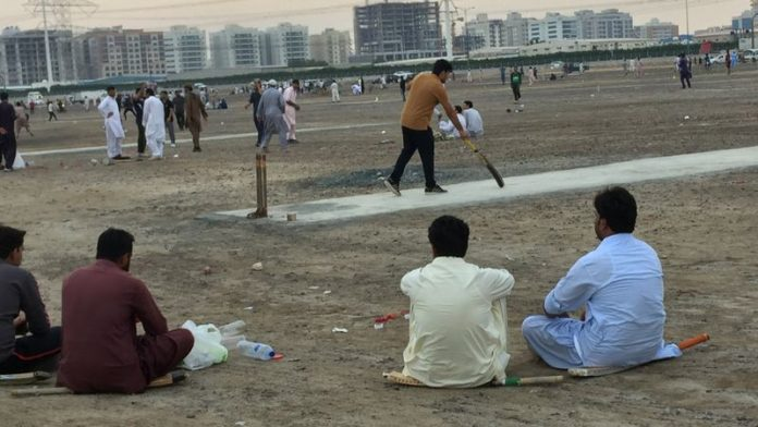 cricket,playing