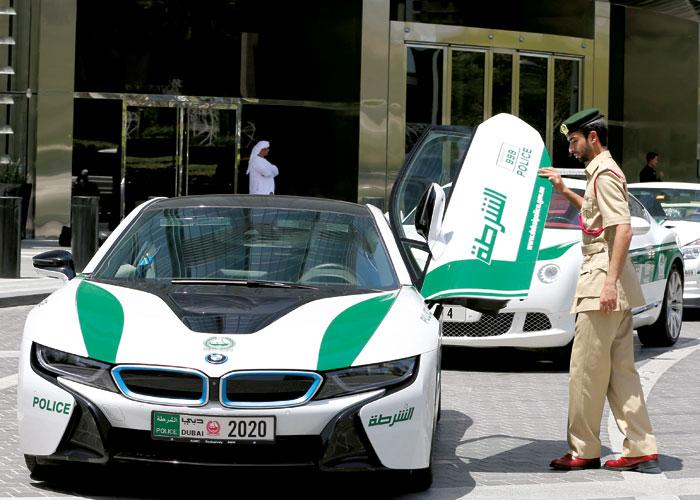 uae,dubai,police,home,security
