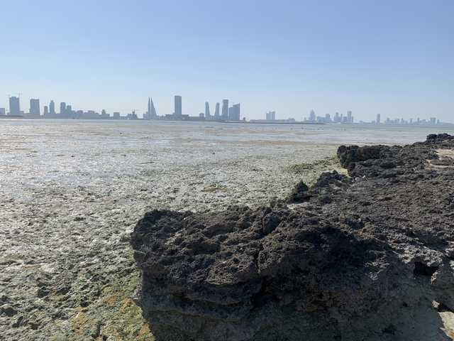 bahrain,alsayah,island,national,heritage,site