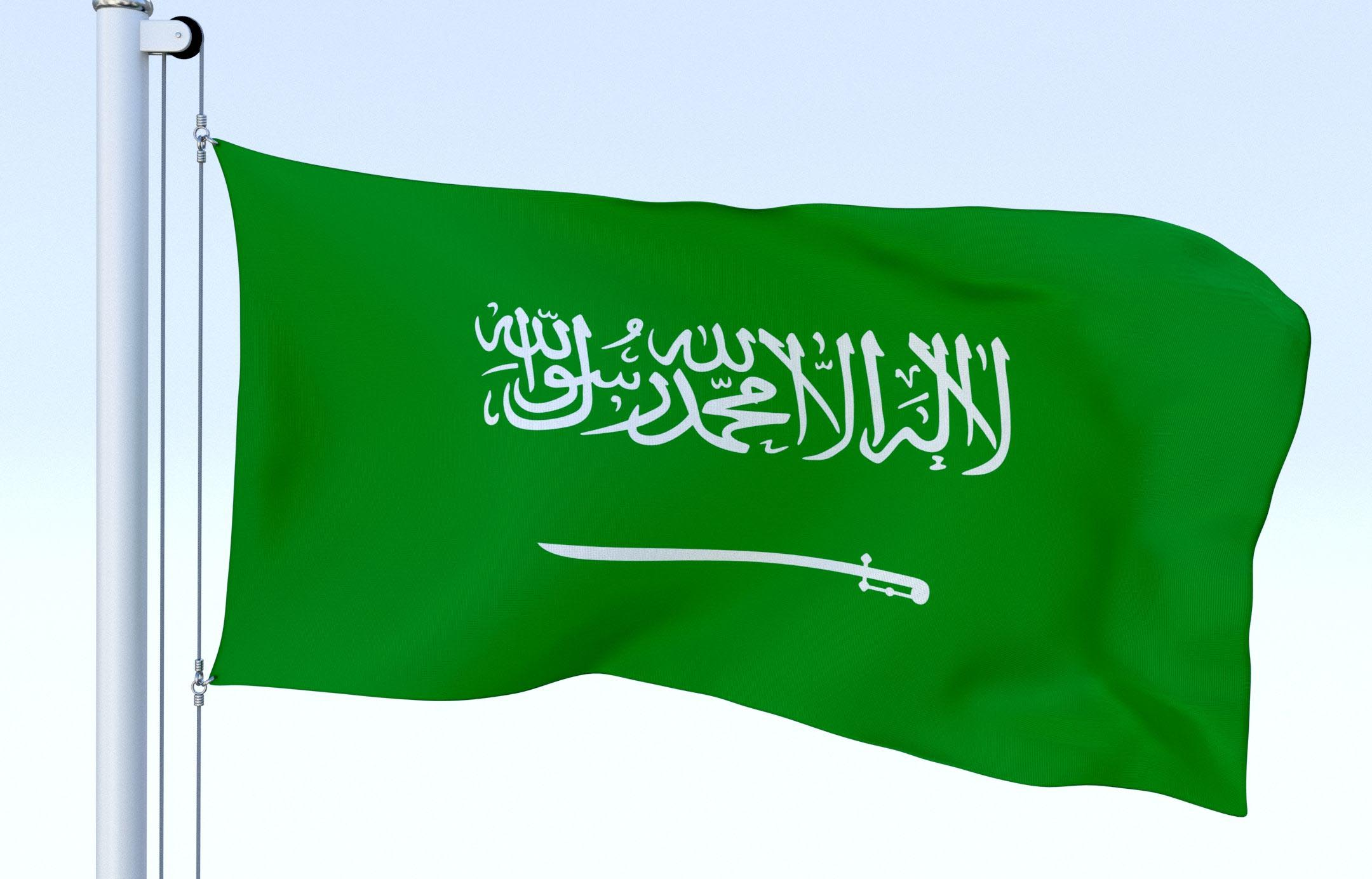 saudi,leading,countries,providing,government,services