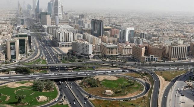 saudi,control,foreign,investment,strategic,areas